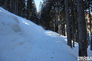 sentiero 493 neve