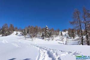 sentiero 471 neve inverno